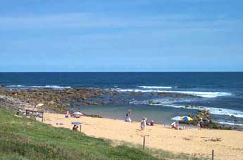 Rock pool at Copacabana Copa Shells Beach House - A pet friendly holiday accommodation beach house with dog friendly beaches at Copacabana Beach on the Central Coast NSW